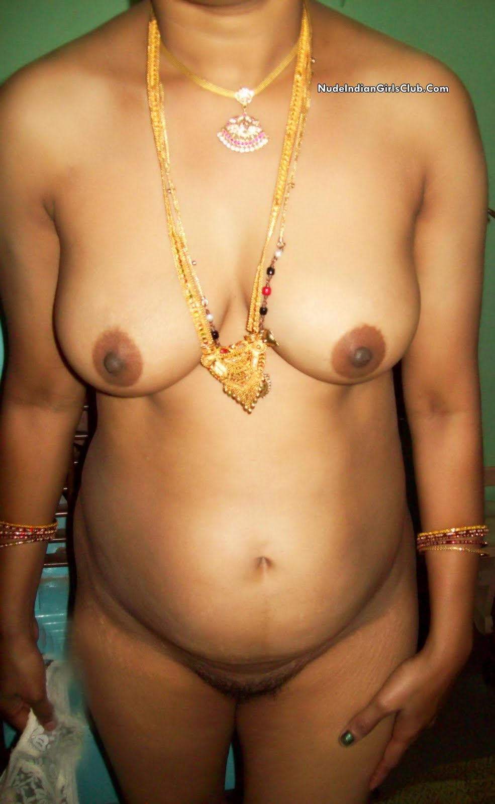 Indian Aunties South Indian Nude Aunties-4403