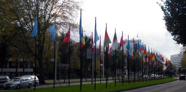 Arbitraje y Derecho Internacional