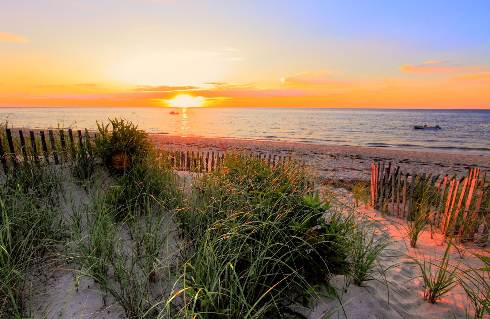 A Lovely Life, Indeed: Visit Massachusetts: Cape Cod