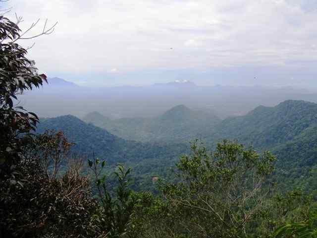 pemandangan gunung poteng