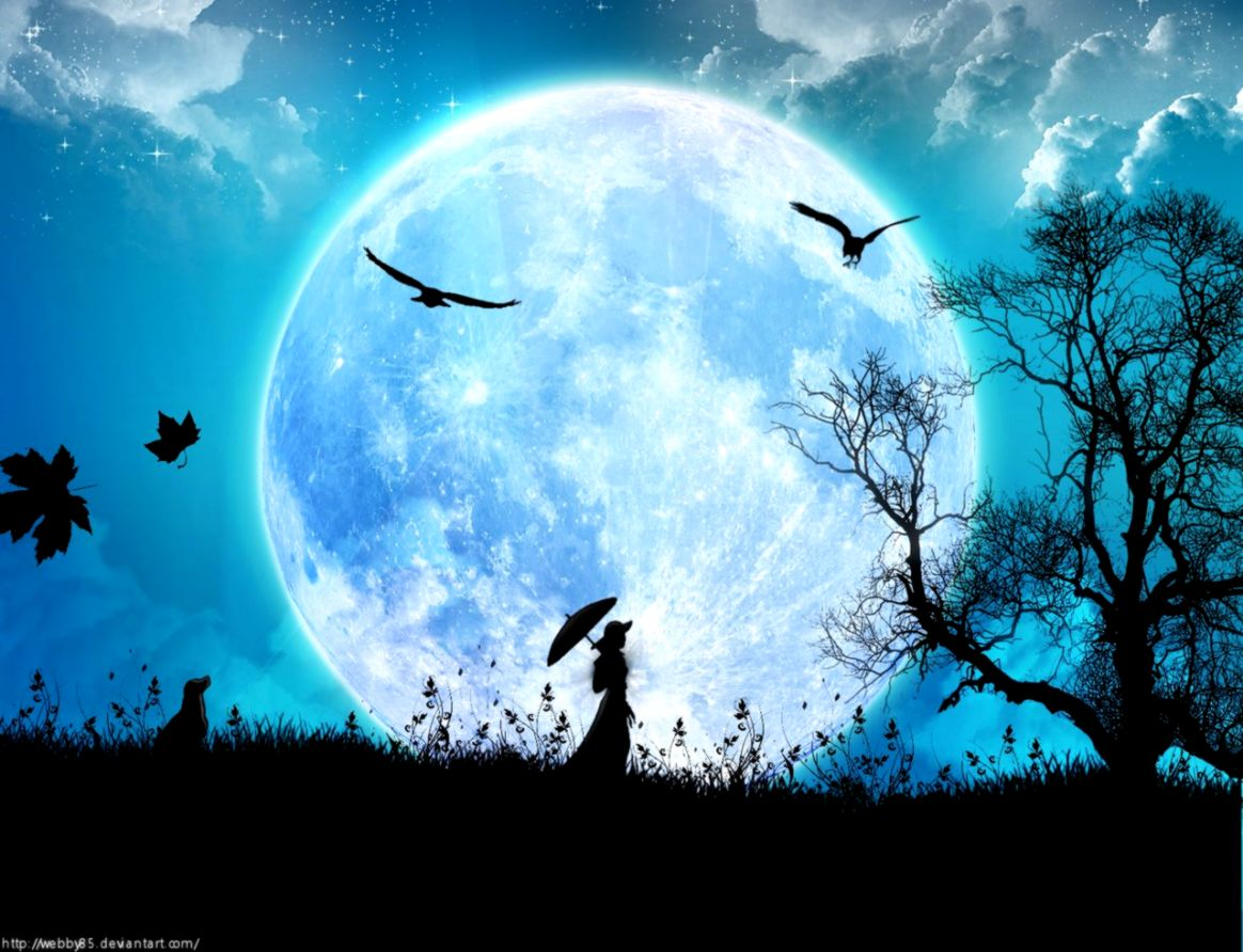 301 Moon HD Wallpapers Background Images Wallpaper Abyss