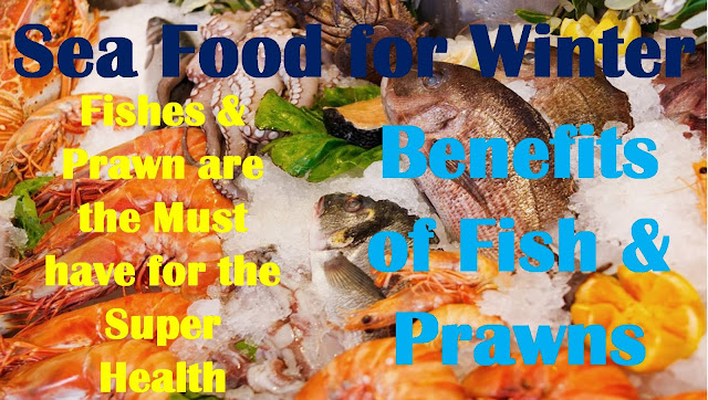Sea Food for Winter | Fishes & Prawn are the Must have for the Super Health | Benefits of Fish & Prawns