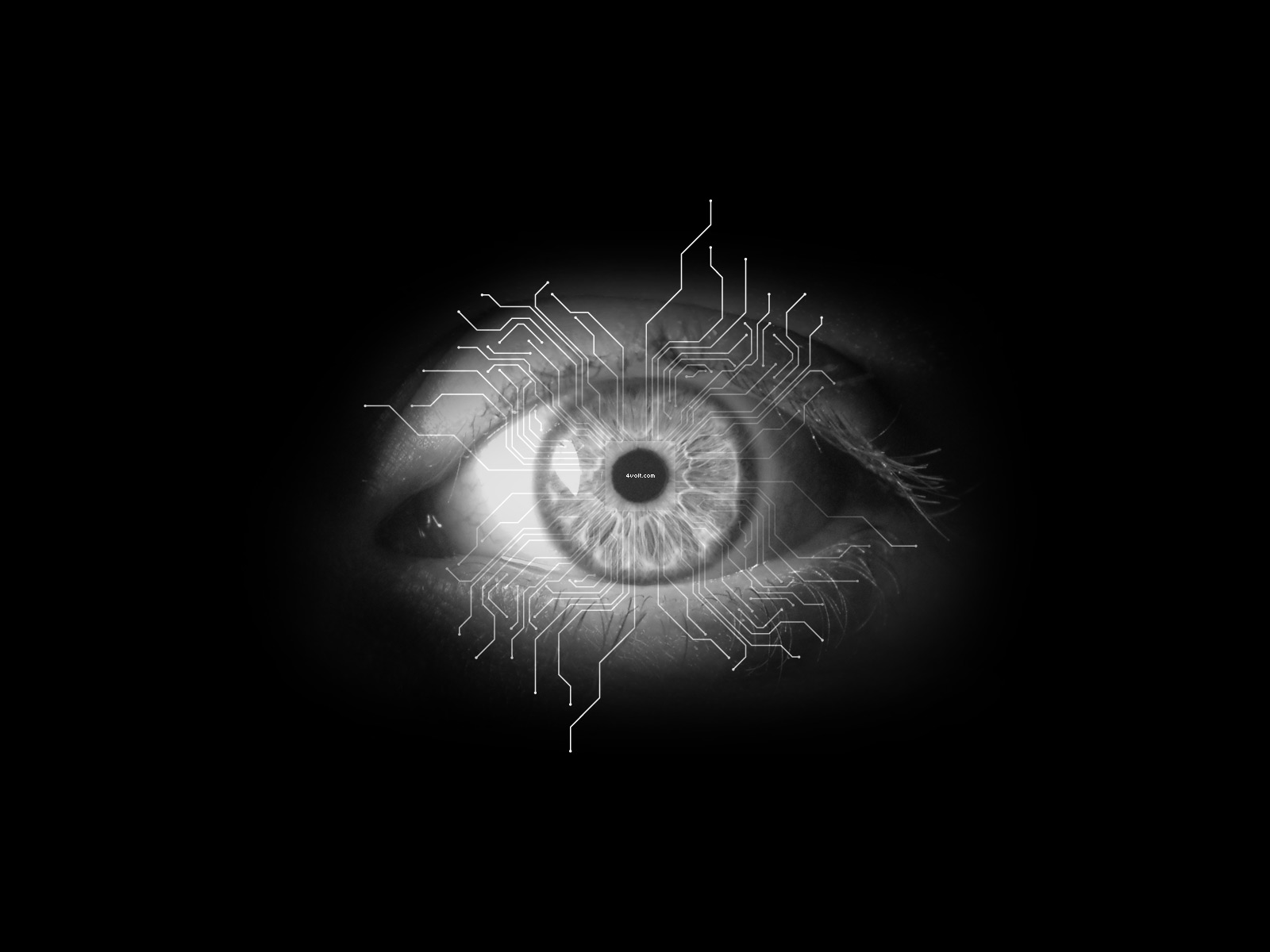 Mais scrap imagens para facebook imagens para google instagram whatsapp tumblr - Eye drawing wallpaper ...