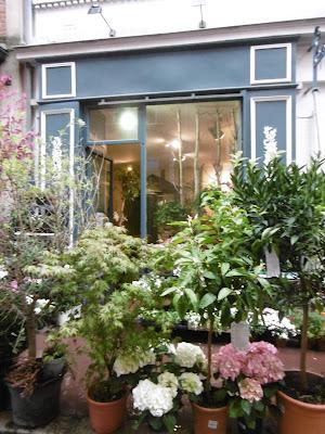 Vitrine fleurie, rue bouquières, Toulouse , malooka
