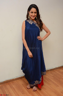 Pragya Jaiswal in beautiful Blue Gown Spicy Latest Pics February 2017 060.JPG