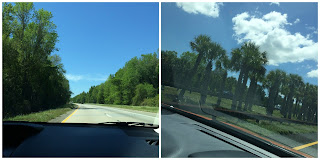 walt disney world vacation road trip