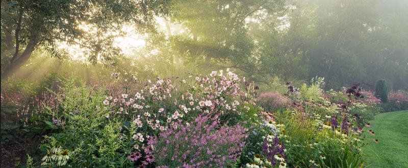 Garten Moorriem Un Jardín Para Soñar Desde Muchos ángulos