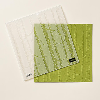 Take a look at the Woodlands Textured Impressions Embossing Folder by Stampin' Up!