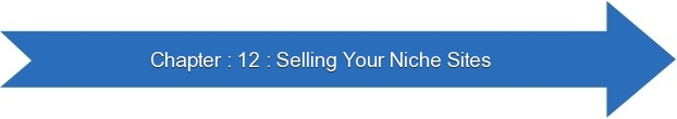 Next: Selling Your Niche Sites