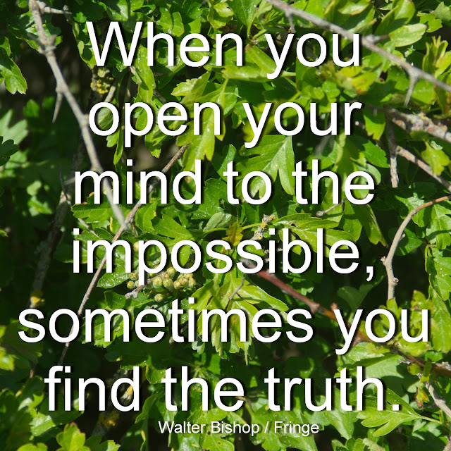When you open your mind to the impossible, sometimes you find the truth. - Walter Bishop