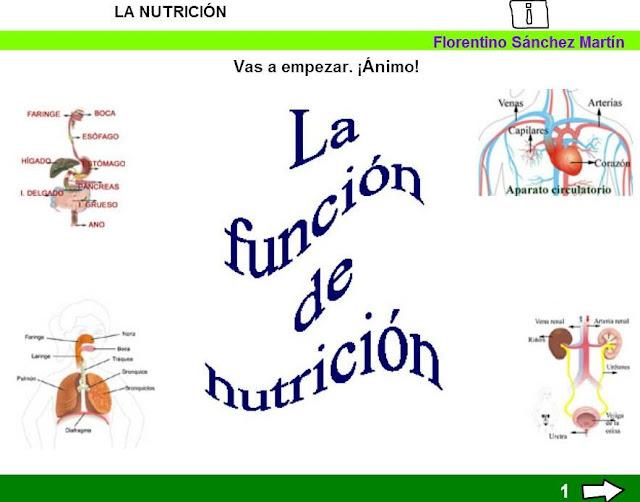 http://cplosangeles.juntaextremadura.net/web/edilim/tercer_ciclo/cmedio/las_funciones_vitales/la_funcion_de_nutricion/la_nutricion/la_nutricion.html