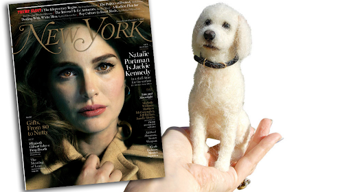 Facci's Felted Friends Featured in New York Magazine Gift Guide
