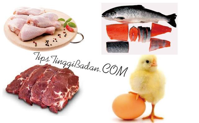 Makanan Peninggi Badan