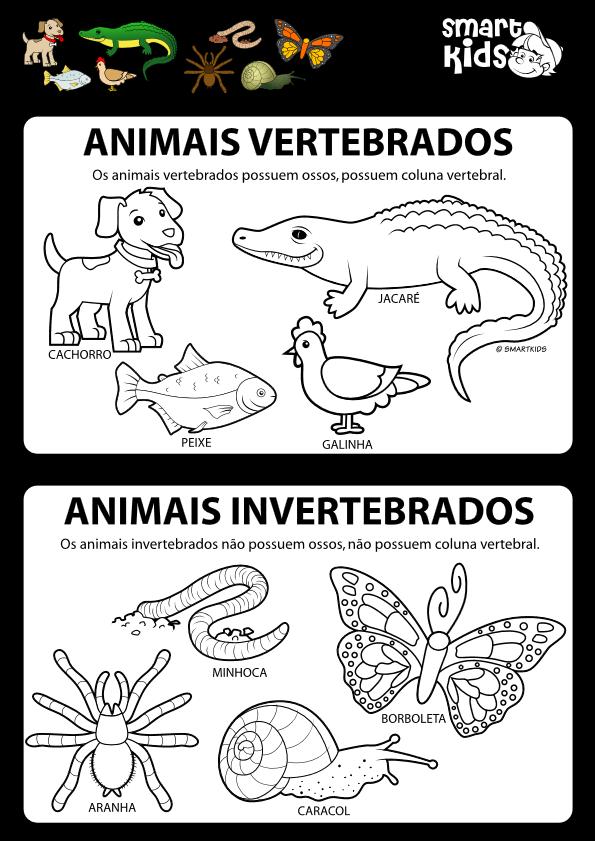 Atividades Animais Vertebrados E Invertebrados Espaco Renda