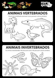 Vertebrados e Invertebrados.