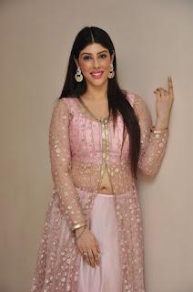 Actress Aditi Singh Latest Stills in Designer Dress at Guppedantha Prema Pressmeet 0007.jpg