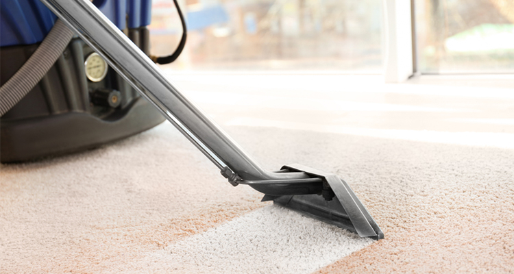 How to Wash Carpet with Steam? www.ipagenews.com
