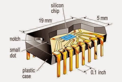 Internal Structure Of An Ic Eee Community