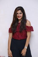 Pavani Gangireddy in Cute Black Skirt Maroon Top at 9 Movie Teaser Launch 5th May 2017  Exclusive 003.JPG