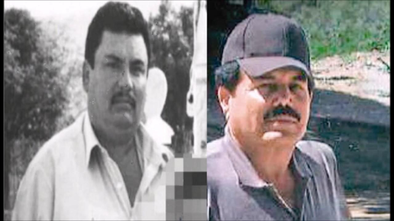 Los tres frentes del Cártel de Sinaloa el primero de El Mayo Zambada, el segundo de El Guano y el tercero de Dámaso