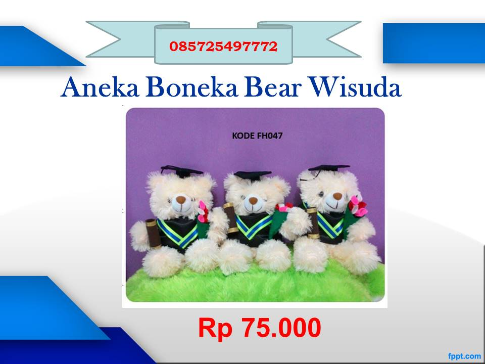 Beruang Wisuda 085725497772 Grosir Boneka Murah Grosir Boneka