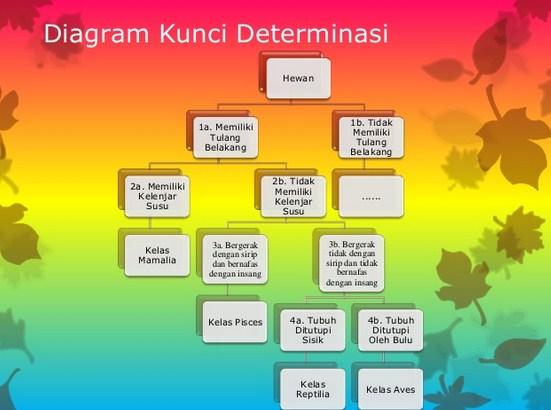 Langkah Menyusun Kunci Determinasi