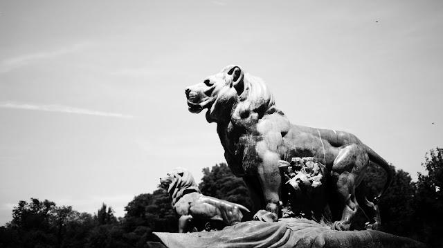 Hola Madrid : Fotografía