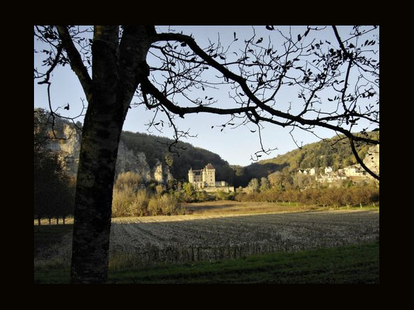 Château de la Malartrie (VÉZAC) et LA ROQUE-GAGEAC vus depuis la plaine de SAINT JULIEN, sur l'autre rive de la Dordogne by Michel Chanaud as seen on linenandlavender.net, http://www.linenandlavender.net/p/blog-page_5.html# Take me there.