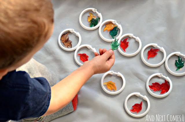 Toddler sorting and grouping leaves for a fall math activity tray