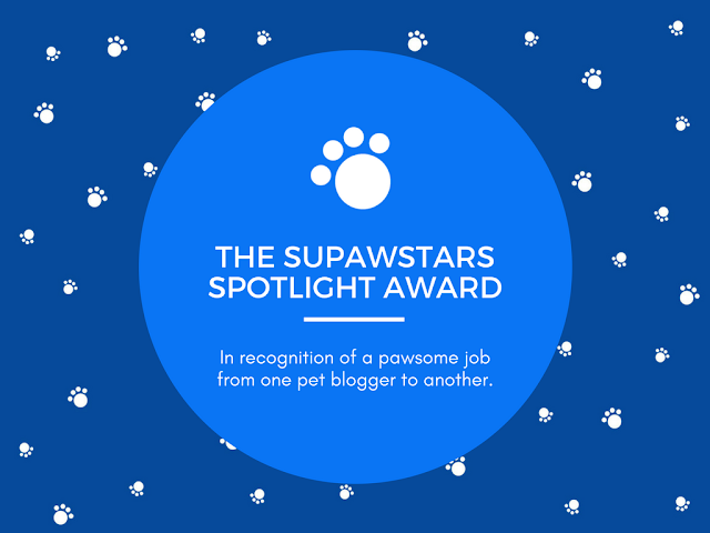 Supawstars Spotlight Award