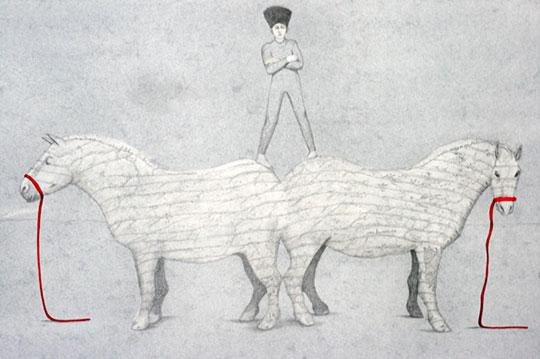 Ilustración de Sena Cifuentes