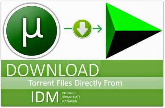 How To Download Torrents/utorrent HD Movies With IDM