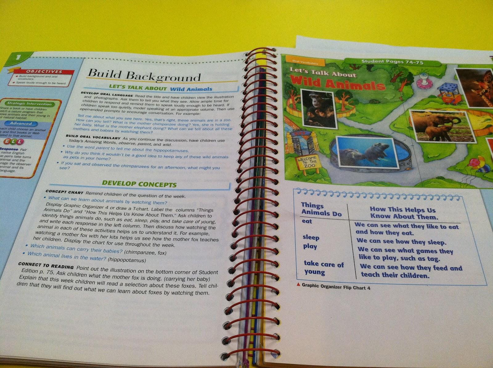 Scott Foresman Reading Street First Grade Worksheets | Printable