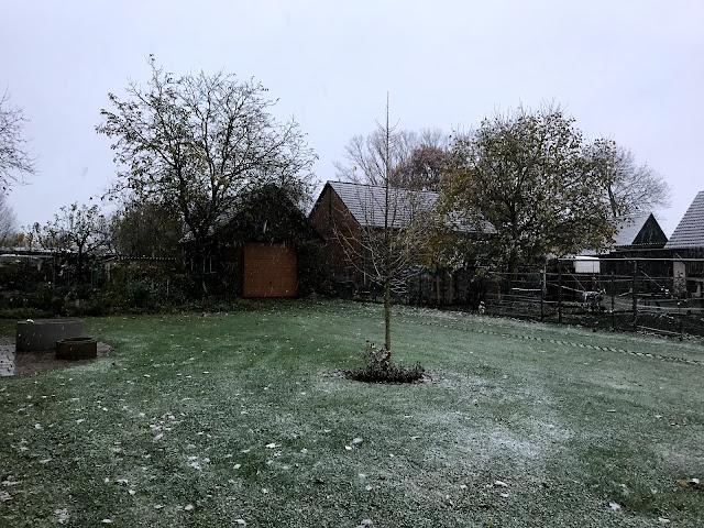erster Schnee 2017