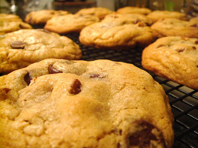 America S Test Kitchen Perfect Chocolate Chip Cookies
