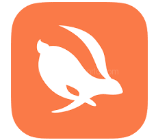 Download Turbo VPN Pro Hack MOD APK
