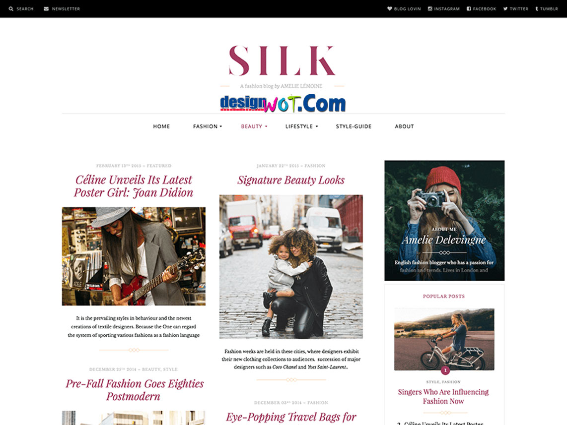 SILK Responsive WordPress Theme
