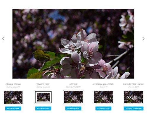 500 Pixels, 10 trang web lưu trữ và chia sẻ hình ảnh tốt nhất