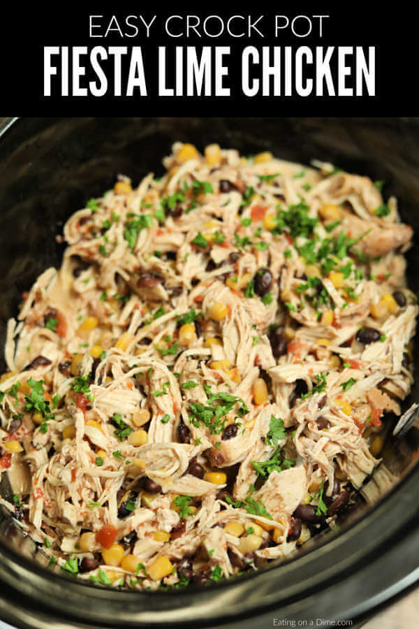 CROCK POT FIESTA CHICKEN RECIPE