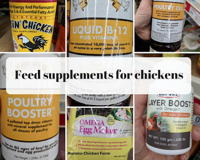 Feed supplements for chickens