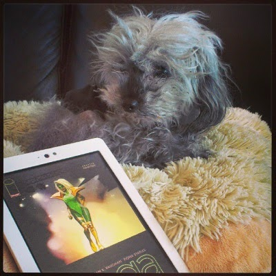 A fuzzy grey poodle, Murchie, lies on a sheep-shaped pillow with a white Kobo propped in front of him. The Kobo's screen has the cover of Saga Volume Four on its, featuring a brown-skinned woman in a fantastical green superhero costume and a massive white wig.