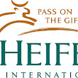 Heifer International Fundraiser is Coming! | Nathan Bransford, Author