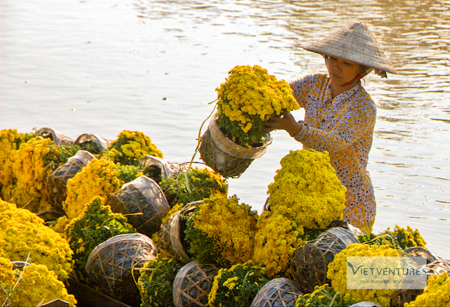 Trade And Play Flowers of Vietnamese's Traditional Tet - Photo An Bui