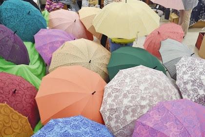 傘作りピーク 福井洋傘