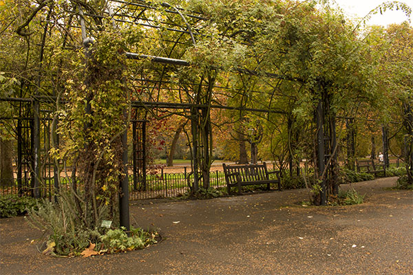 Hyde Park, London, fall, blog, post, photos, photography, park,