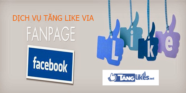 dich vu tang like via