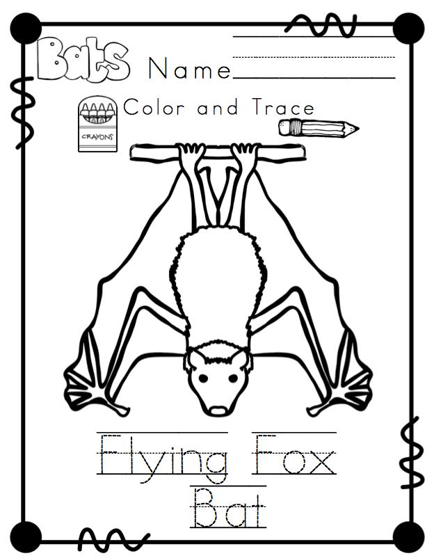 Bat Types Printable No Prep ~ Preschool Printables