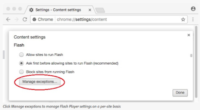 Click Manage exceptions to manage Flash Player settings on a per-site basis