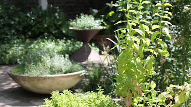 Una de Instagram: un pequeño jardín urbano con Halfagarden