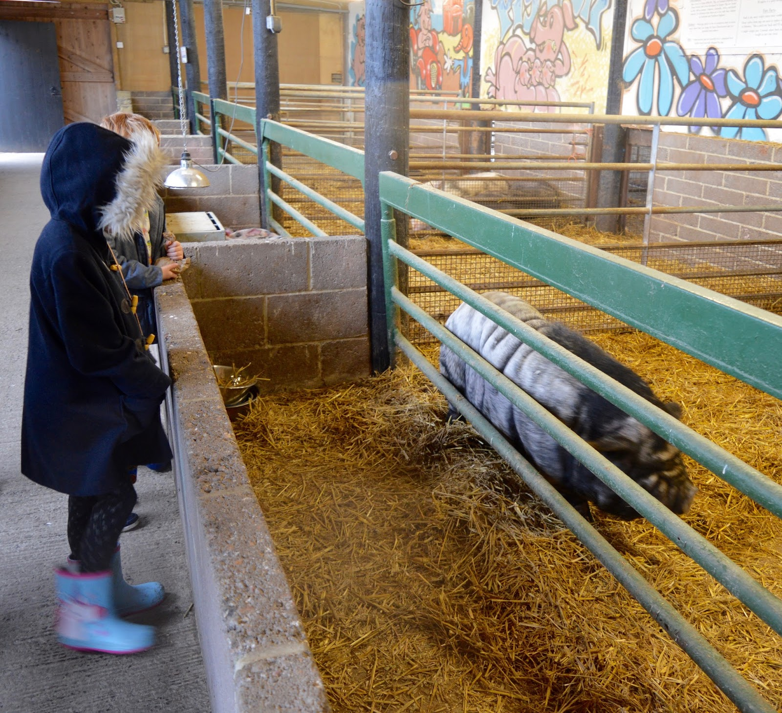 Whitehouse Farm Morpeth | What to do when it rains | North ...